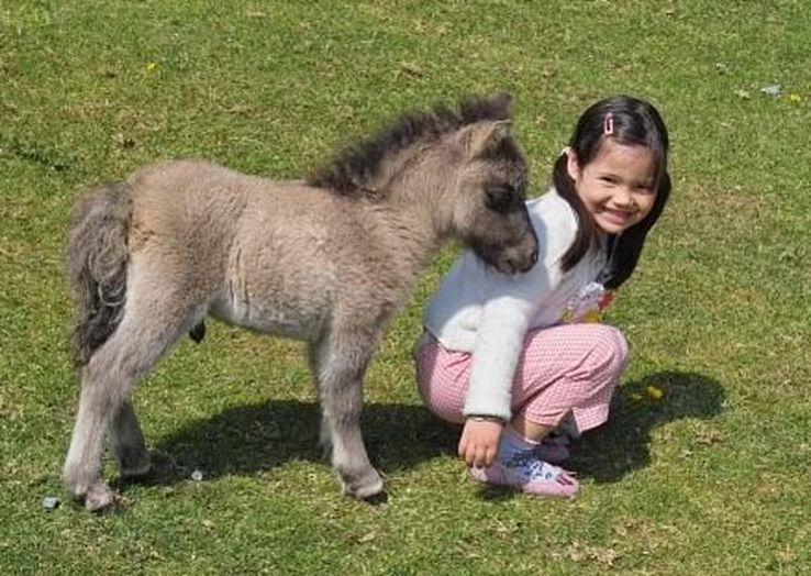 Emma Răducanu când era mică