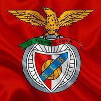 FC Argeș vinde la Benfica!