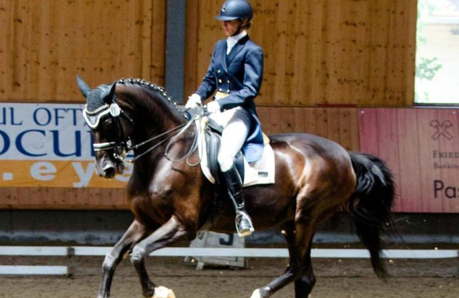 Gazeta Sporturilor a intrat în posesia unor imagini dureroase cu calul Siker, fost multiplu campion național și balcanic, ținut de CSA Steaua în condiții improprii la o bază hipică privată.