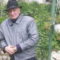 Romeo Pașcu