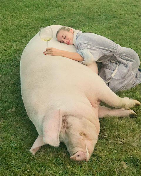 FOTO Iubita campionului de la US Open deține un porc de jumătate de tonă. Pozele sunt fabuloase